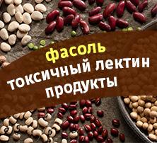 фасоль токсичныи лектин продукты