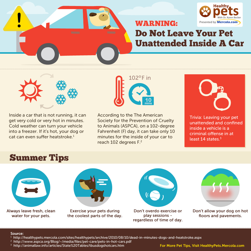 Image result for Hot weather tips to keep kids safe, car running