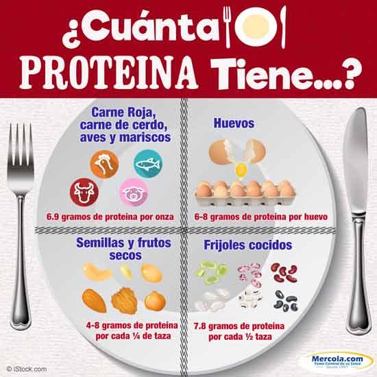 cuanta proteina tiene