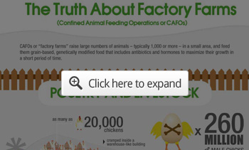 truth about factory farms