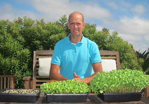Dr. Mercola Growing Sprouts Plant