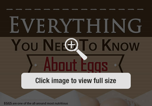 Everything You Need to Know About Eggs Infographic Preview