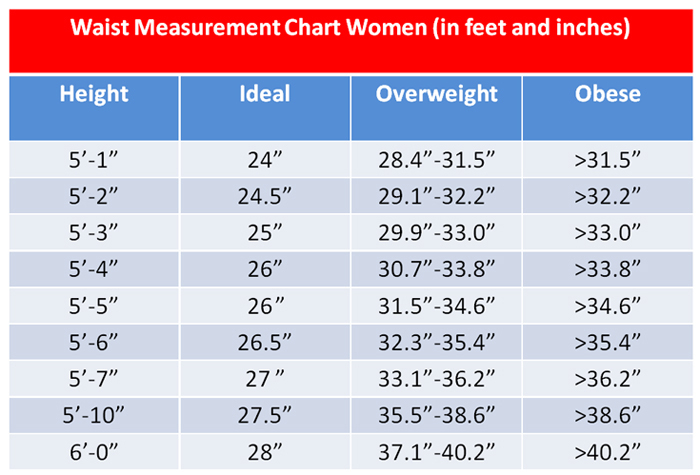 In girls', these measurements may correspond most closely to anywhere from a size 14 to a size 18, depending on the brand. Some brands list a size 14 with chest measurements of 33 inches, waist measurements of 27 inches and hip measurements of 33 inches.