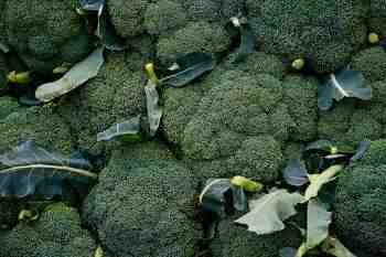 How Broccoli Fights Cancer