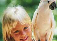 Exotic Bird Enthusiasts Stress Education, Conservation