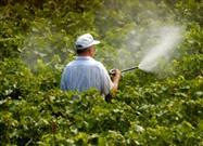 Organic Pesticides Not Always Best Choice
