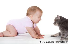 Babies Who Live with Pets May Have Fewer Allergies