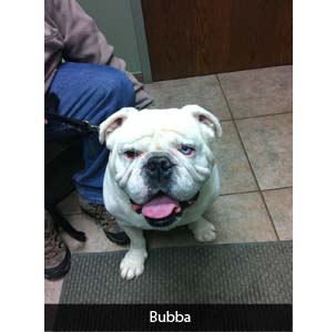 This Month's Real Story: Bubba