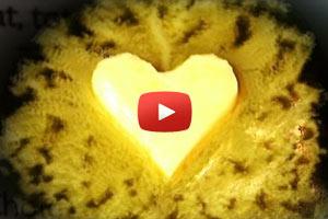saturated fat cholesterol heart disease