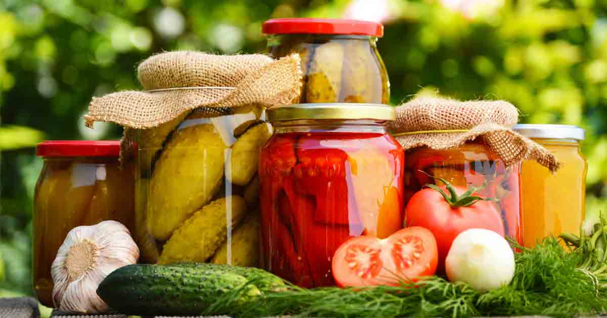What Is The Best Fermented Food To Eat