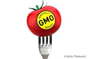 Win or Lose, State GMO Labeling Initiatives Are Changing the Game