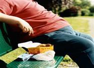 Harvard Researchers Address Obesity and Toxic Food