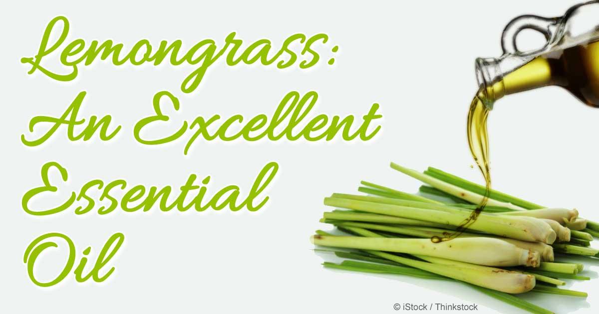 Herbal Oil: Lemongrass Oil Benefits and Uses