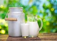 Health Benefits of Organic vs. Conventional Milk