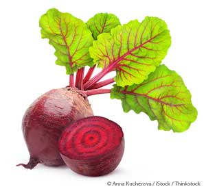 Image result for images of beets