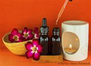 Tea Tree Oil for Pets