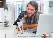 Dogs in the Workplace: Pro or Con?