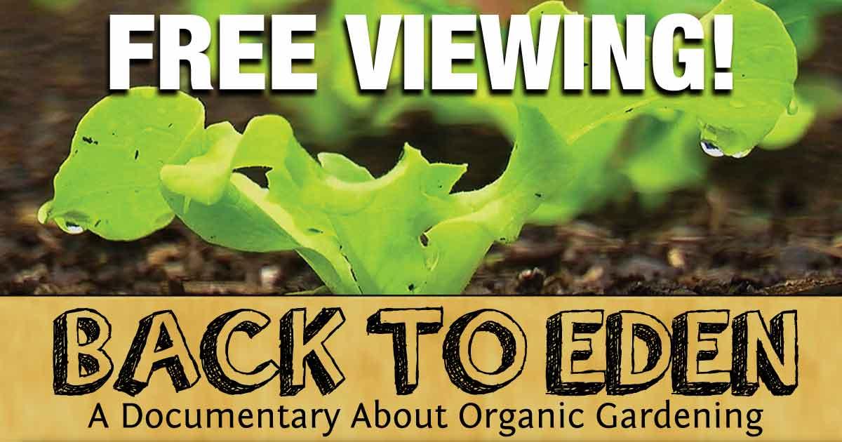 Back To Eden How Natural Methods Can Help In Gardening