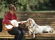 The Right Music Can Help Pets Heal