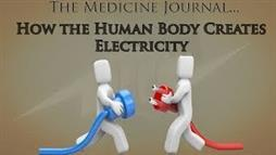 How Your Body Generates Electricity