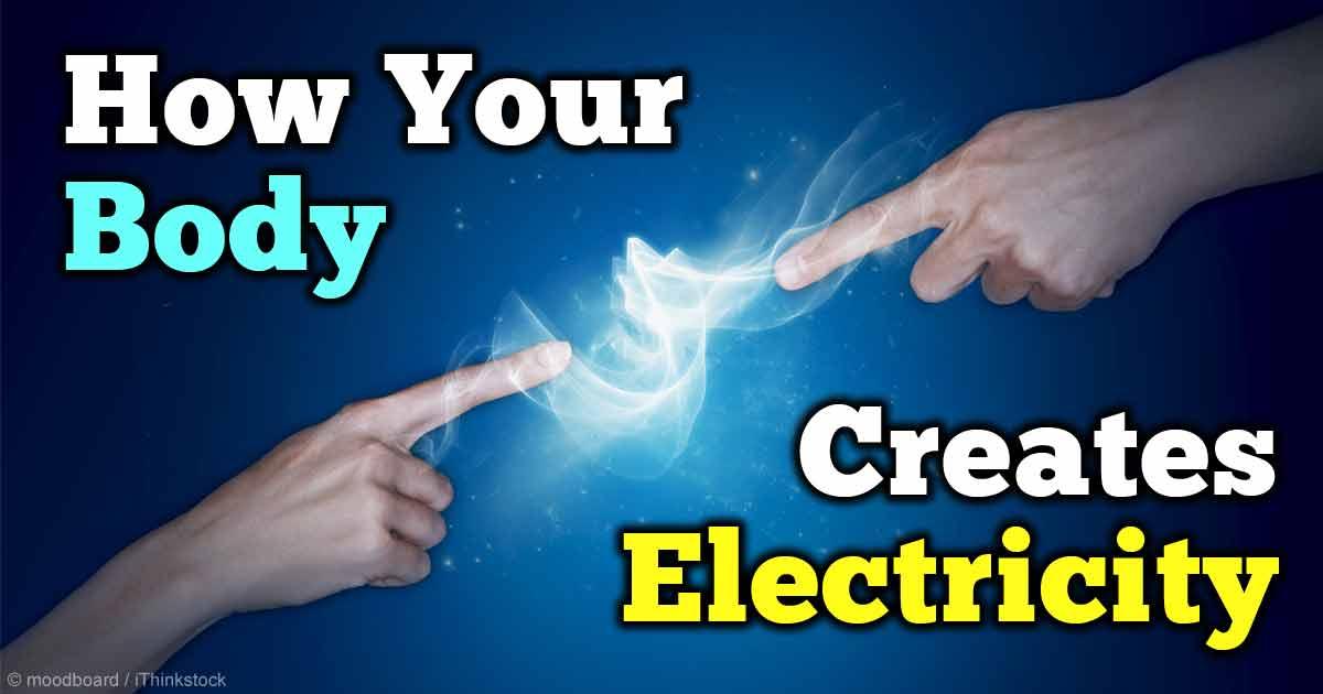 listrik di dalam tubuh manusia