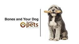 The Trendy Dog Chew That's an Extreme Choking Hazard