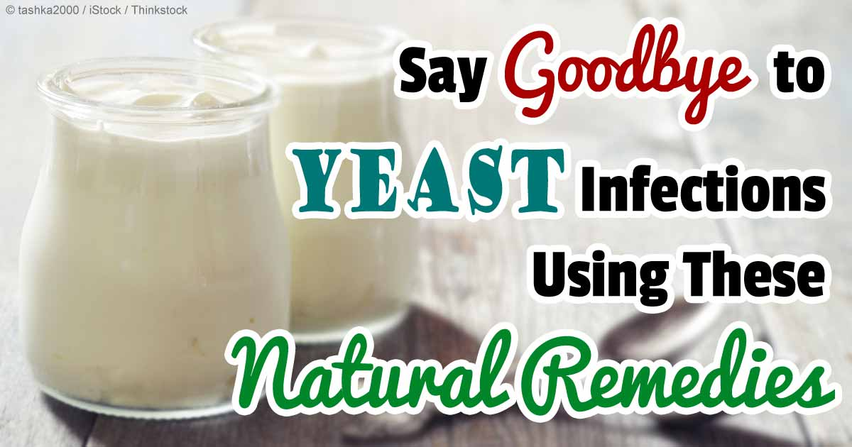 How To Cure Yeast Infection In Dogs Naturally