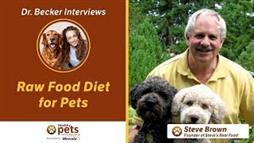 Looking for Information on the Very Best Nutrition for Your Pet?