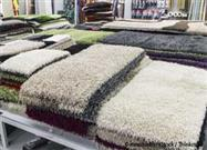 GreenSpace: Carpeting Presents Complex Health Issues