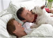 When Your Pet Disturbs Your Sleep, What Should You Do?