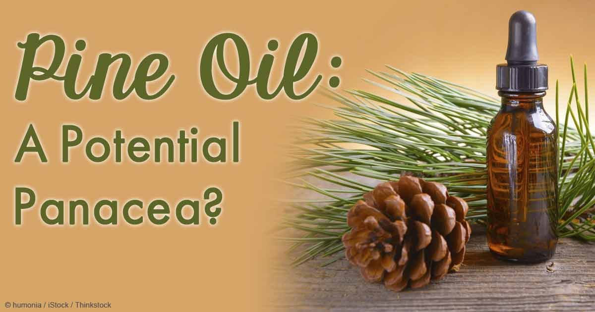 Pine Oil Benefits and Uses