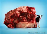 Factory Farm Meat