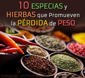 10 Especias y Hierbas promueven Perdida de Peso