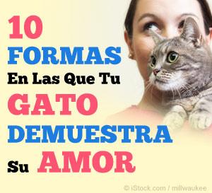 10 formas en las que tu demuestra su amor