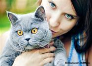 Allergic to Cats but Love Them Anyway? Try This