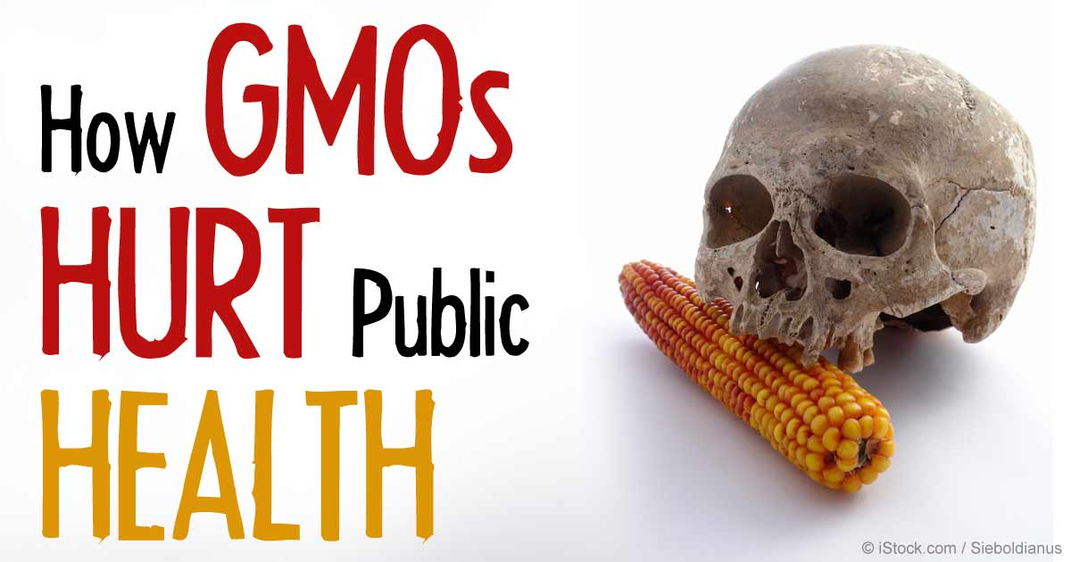 GMO Food Doesn't Harm Human Health, Report Says | Time