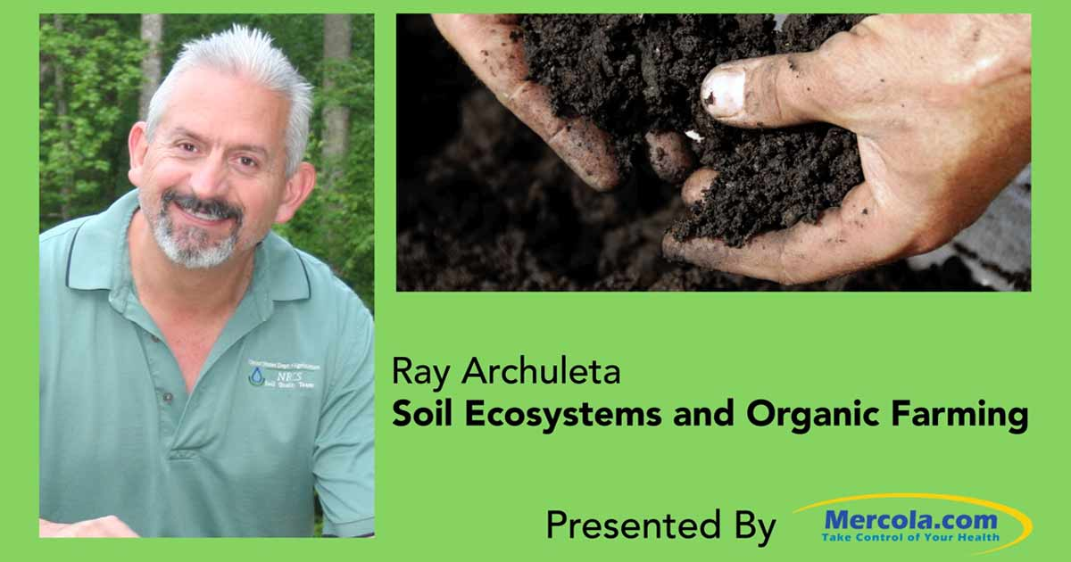 Scientist reveals simple tips for improving soil health for Soil articles
