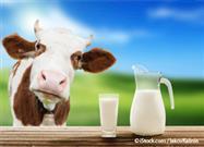 drinking raw milk