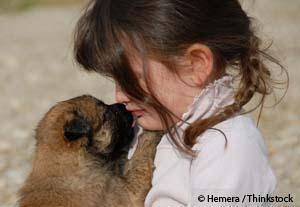Perro Consolando