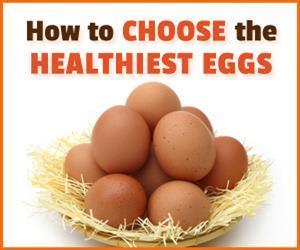 healthiest egg