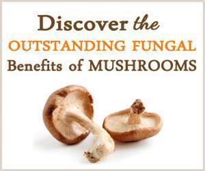 mushrooms benefits