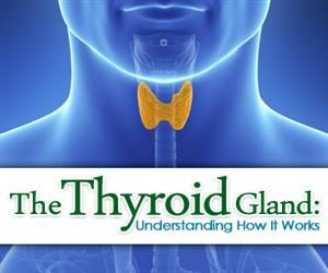 thyroid gland facts