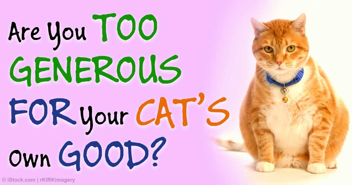 High Mercury Levels In Cat Food