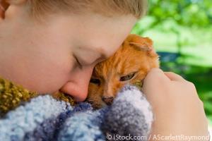 Cuidado Paliativo para Animales