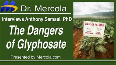 Researcher Reveals Monsanto Has Known Since 1981 That Glyphosate Promotes Cancer