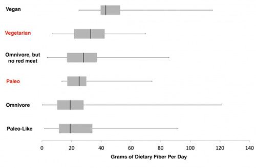 Dietary Fiber Per Day
