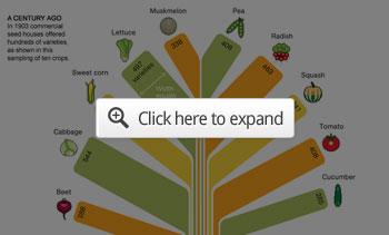Seed Extinction