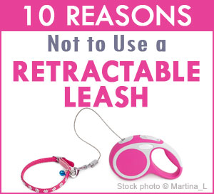 retractable dog leash dangers