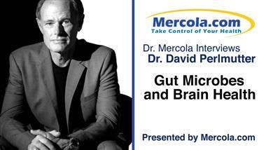 "Neurologist Speaks Out About the Importance of Gut Health for Prevention and Treatment of ""Incurable"" Neurological Disorders"
