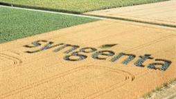 Monsanto Bids to Take Over Syngenta—A Move to Assure a Pesticide-Saturated Future?